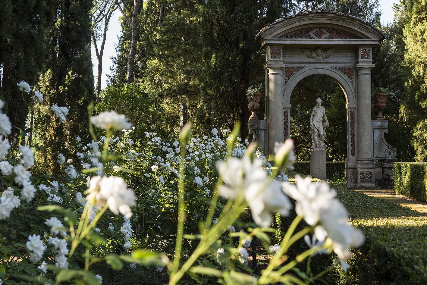 Le rose nel giardino formale