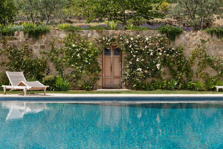 Le rose rampicanti a bordo piscina