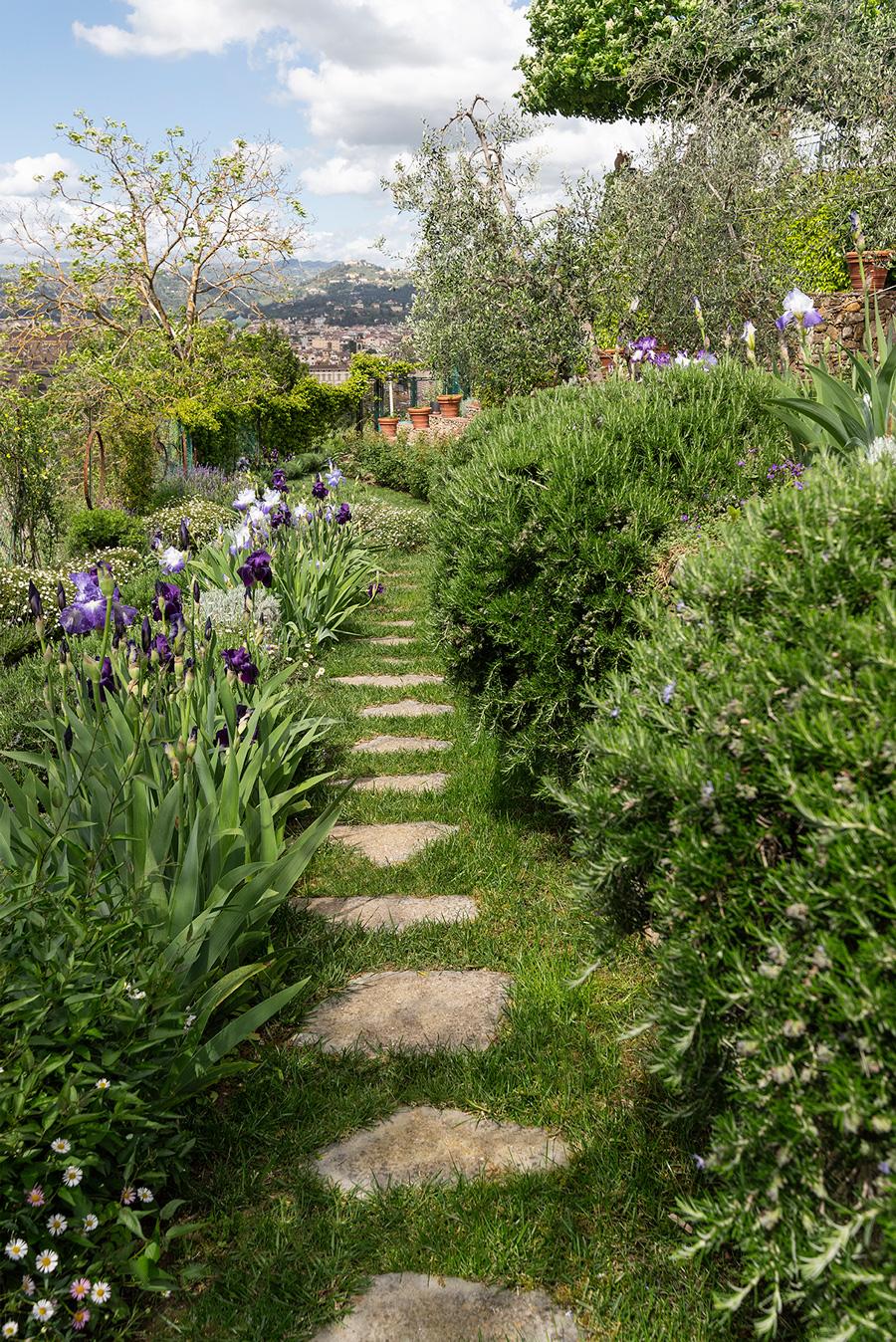 percorso con fiori e piante officinali, colori e profumi
